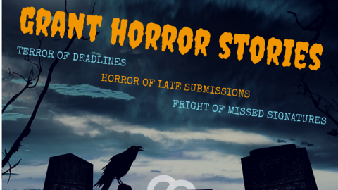 Question Preview: Grant Horror Stories