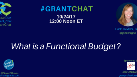 What is a Functional Budget?
